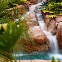 Serenity is our specialty at Dream Pools and Spas.