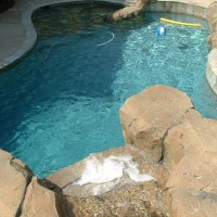 Special Features: Artificial and Simulated Rock waterfalls, grotto, cave , and slide. Quartzite baja landing, coping, and tile. Pentair Pool Products, Easy Touch control, SAM lights, salt water pool.. Description 	: 	Natural Tropical Freeform with Slide