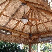 Palapa with fan, speakers and heaters