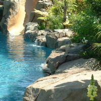 Artificial rock accent boulders, trickling waterfalls and thick landscaping make you feel like you are somewhere else.