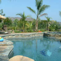 Stacked quartz raised pool wall, rock textured colored concrete decking, tile dolphins on pool floor.